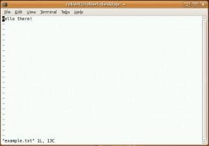 vim editor dalam mode command 300x209 Mengedit file menggunakan Nano dan Vi/Vim